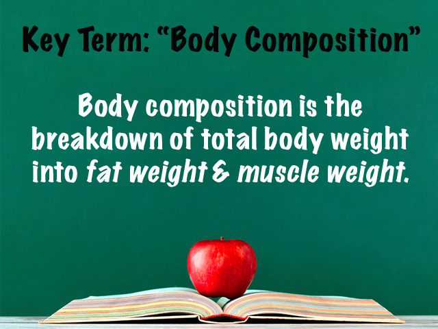 Key Term Body Composition