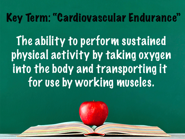 Key Term CV Endurance.jpg