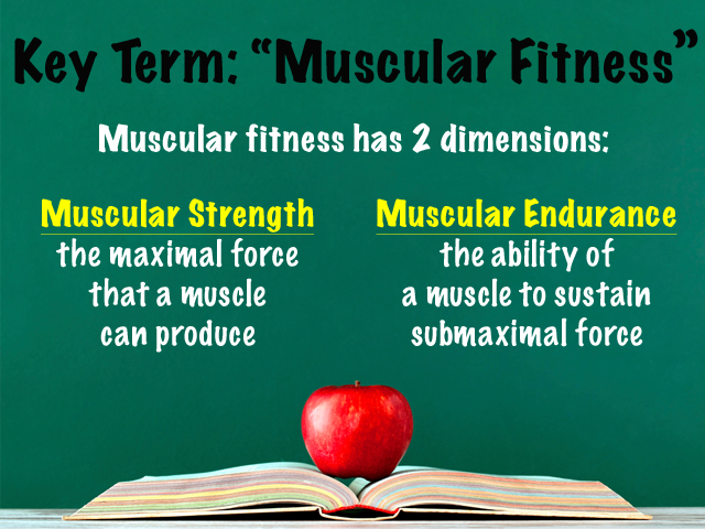 Key Term Muscular Fitness