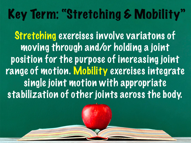 Key Term Stretching and Mobility.jpg